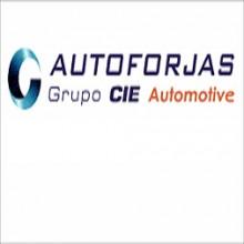 Autoforjas Automotive